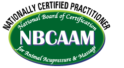 Nationally Certified Practitioner - NBCAAM